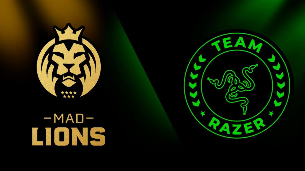 mad lions razer