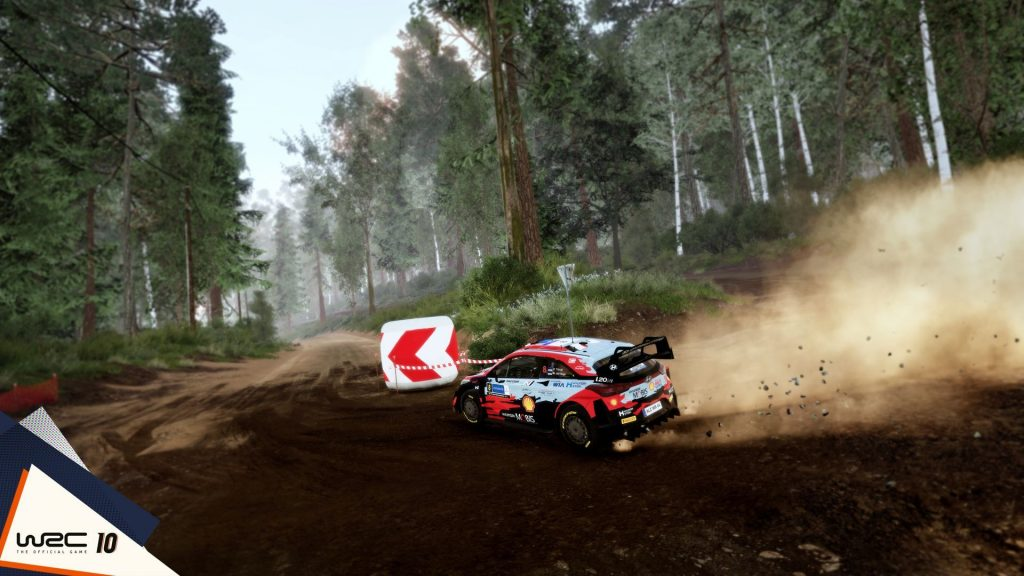 WRC 10 dust